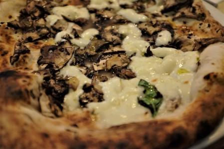 Mushroom and truffle white pizza
